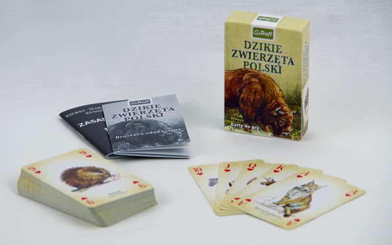 Dlaczego niechowam przeddzieckiem talii kart? Dzikie Zwierzęta Polski