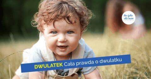 dwulatek cala prawda o dwulatku rozwoj 2-latka