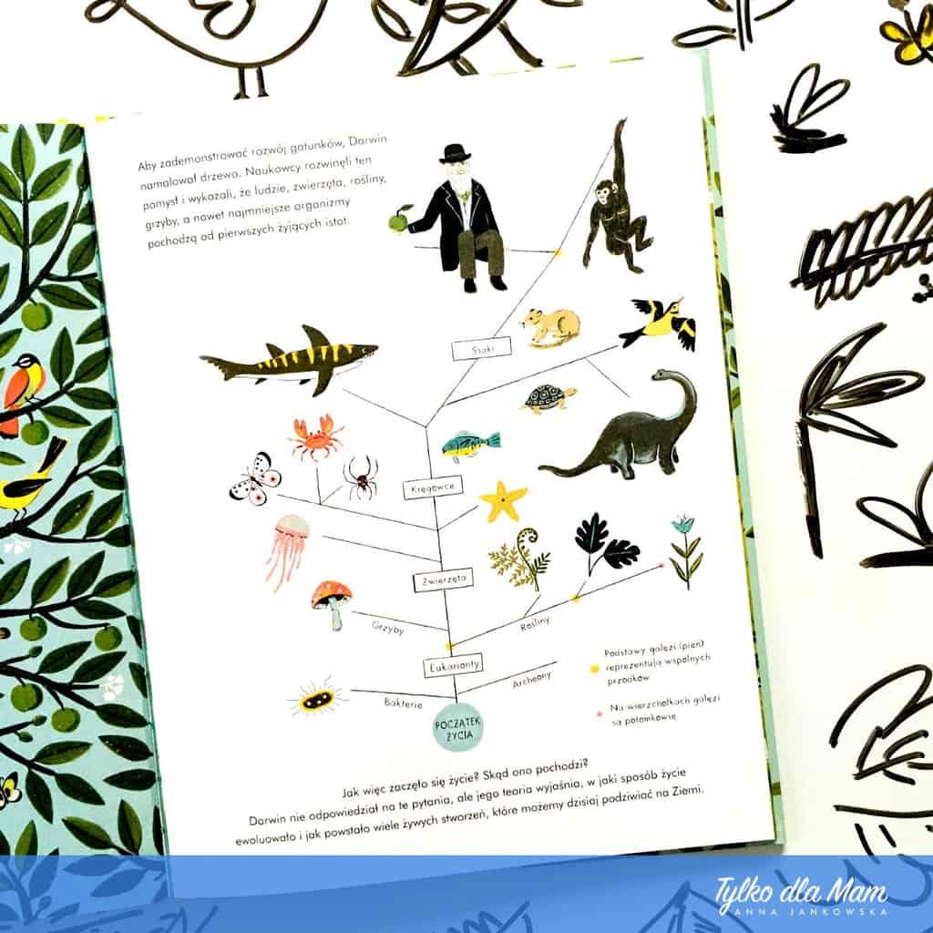 Ewolucja. Opowstawaniu gatunków według Karola Darwina
