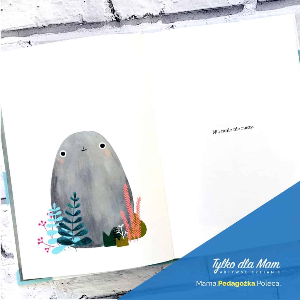Petra ksiązka dla dzieci kamień Marianna Coppo