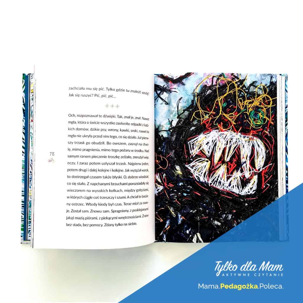 Wojtek książki dla dzieci bocian