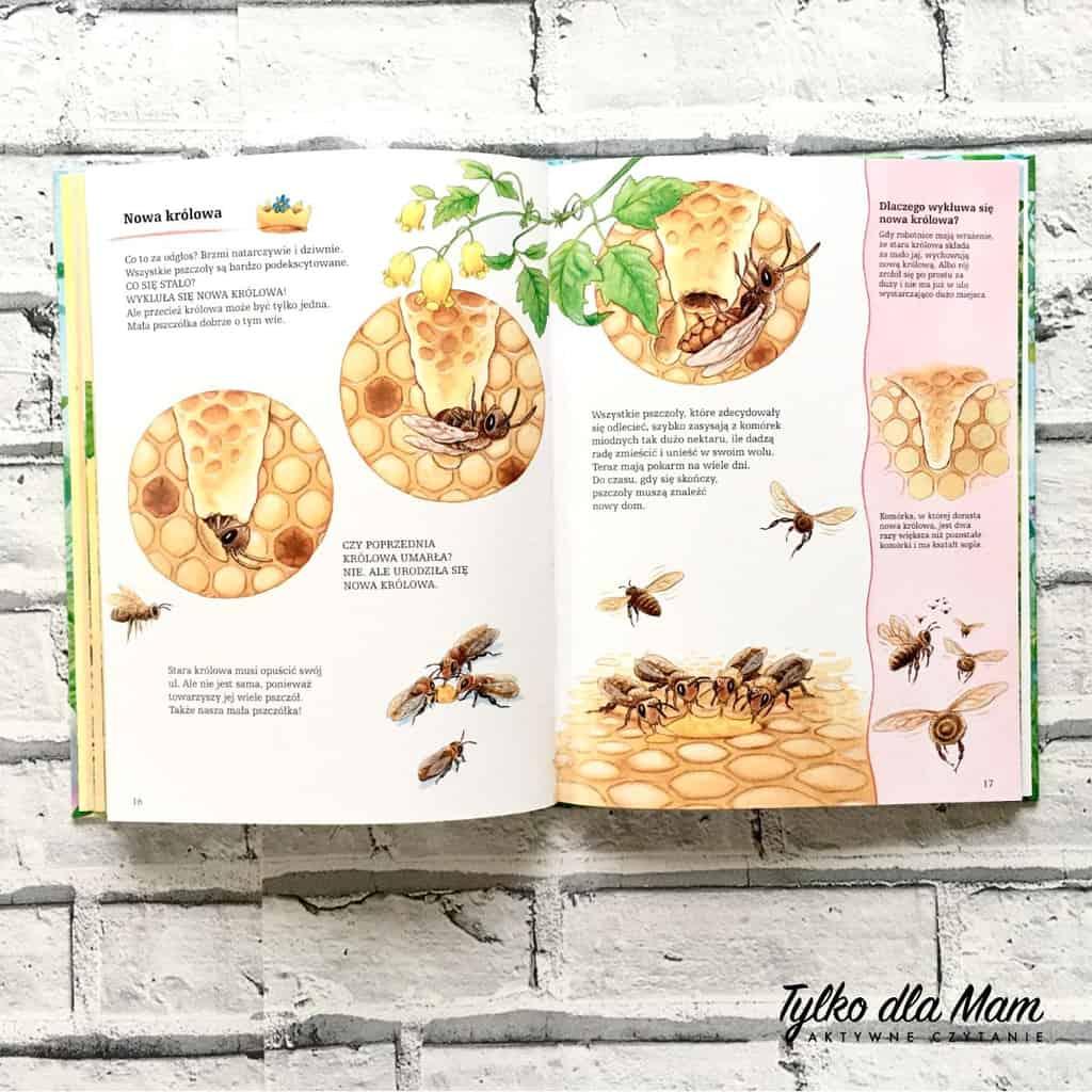 pszczoły iich niezwykły świat recenzja