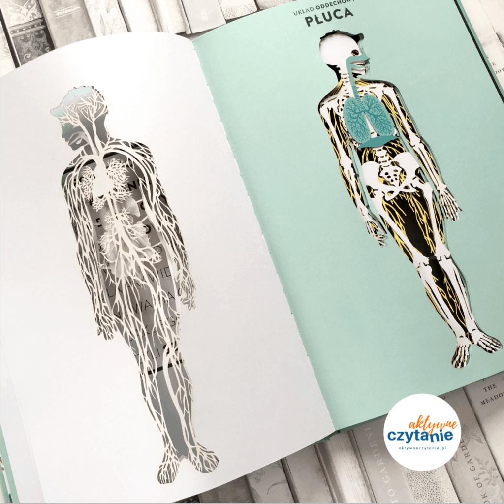 Anatomia obraz ludzkiego ciała ksiązki dla dzieci aokienkami szkielet kości