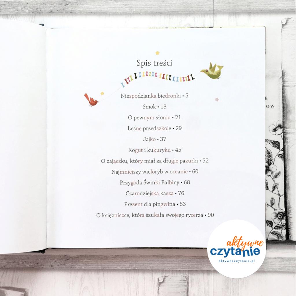 spis treści Czytanki sylabowe zobrazkami książki dla dzieci recenzja aktywne czytanie 100