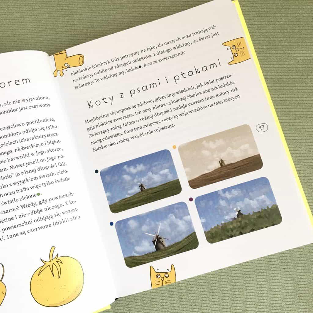 ksiazki-edukacyjne-dla-dzieci-7