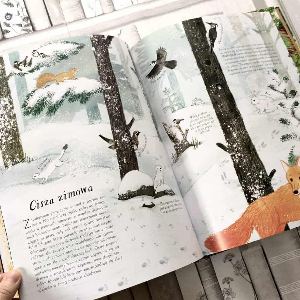 w-sercu-lasu-edukacyjne-ksiazki-dla-dziec8