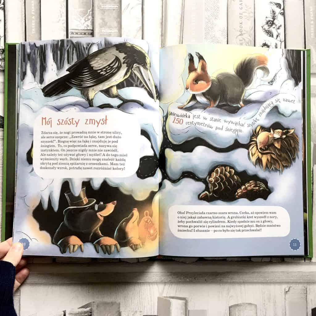 wiewiorka-ksiazki-dla-dzieci-o-zwierzetach